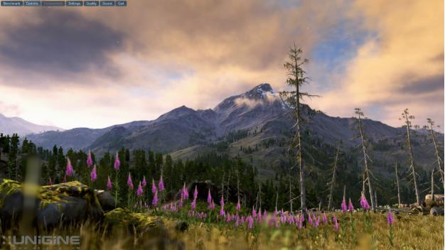 ungine valley