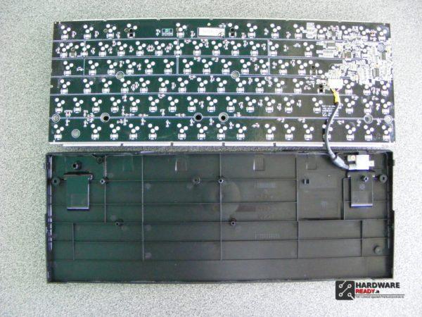 DSCF2593